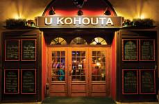 U_KOHOUTA_vstup