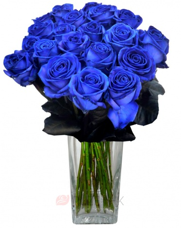 1662-kytice-modrych-ruzi-ruze-modre